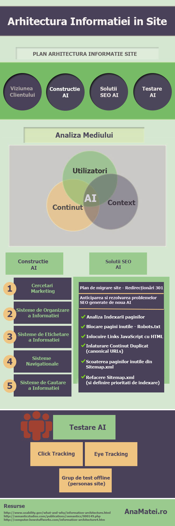 Infografic Optimizare Arhitectura Informatiei in-Site-Design Plan--AnaMatei