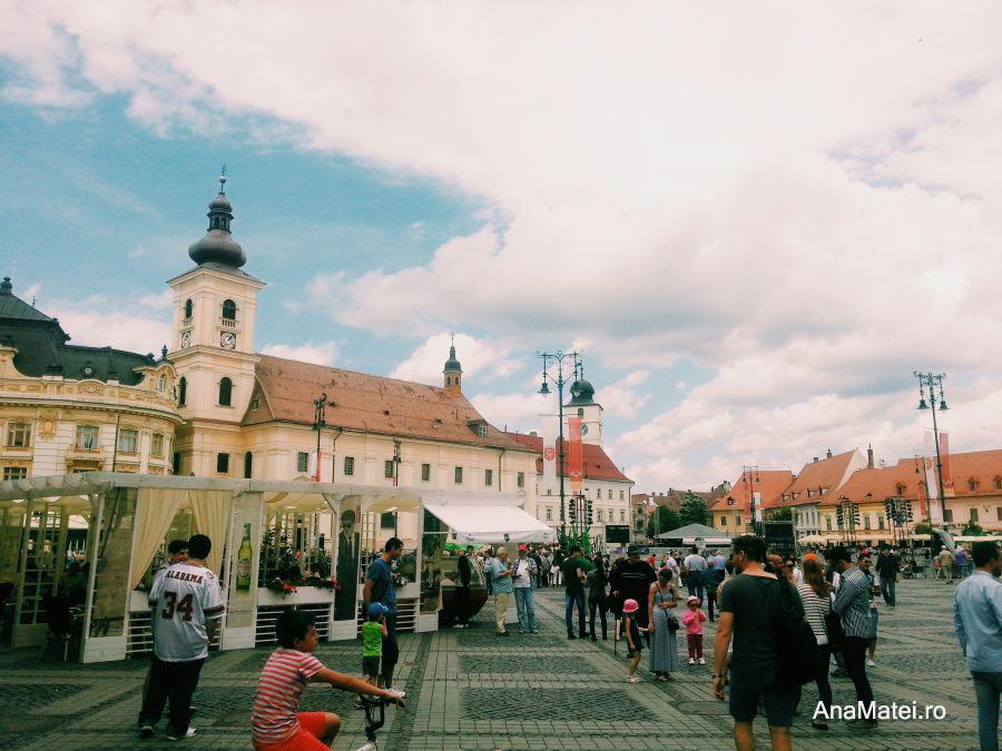 Sibiu FITS 2014