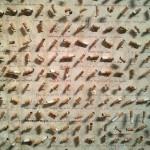 colectia tigarilor fumate - Muzeul Inocentei