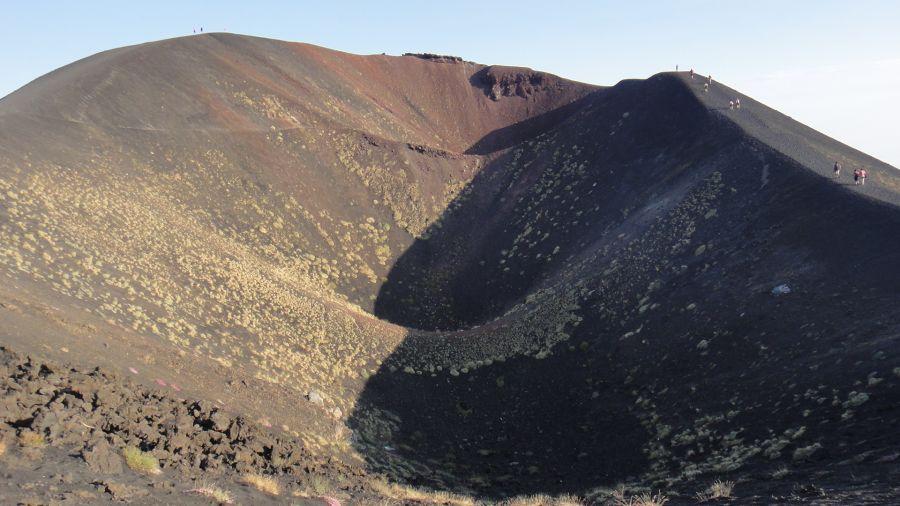 muschi si licheni pe Etna